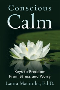 Kindle free promotion of Conscious Calm! | Conscious Calm